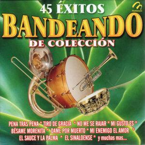Banda Los Dorados 歌手頭像