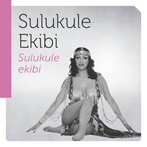 Sulukule Ekibi 歌手頭像