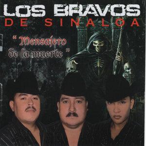 Los Bravos De Sinaloa 歌手頭像