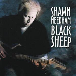 Shawn Needham 歌手頭像