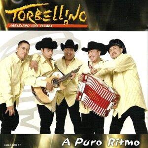 Torbellino 歌手頭像