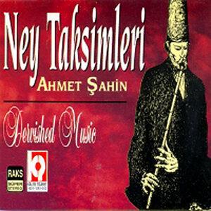 Ahmet Şahin 歌手頭像