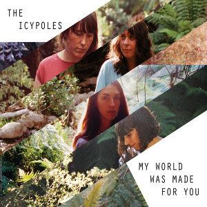 The Icypoles