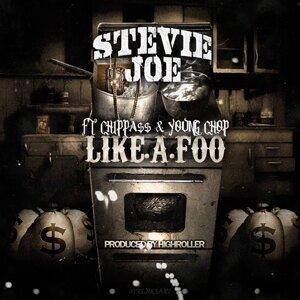 Stevie Joe 歌手頭像
