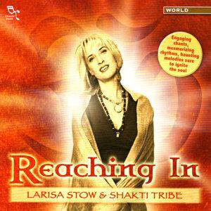 Larisa Stow & Shakti Tribe 歌手頭像