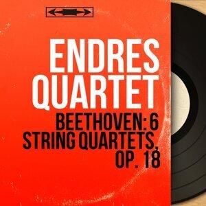 Endres Quartet 歌手頭像
