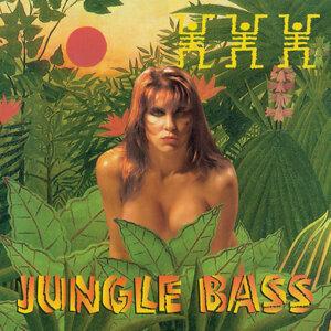 Bass Tribe 歌手頭像