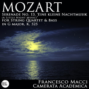 Camerata Academica & Francesco Macci 歌手頭像