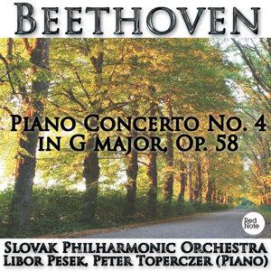 Slovac Philharmonic Orchestra, Libor Pesek 歌手頭像