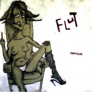 Flut 歌手頭像