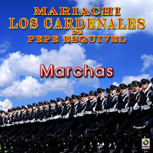 Mariachi Los Cardenales De Pepe Esquivel 歌手頭像