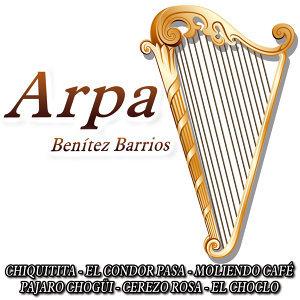 Coral de Arpa latina 歌手頭像