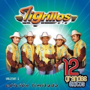 Los Tigrillos 歌手頭像