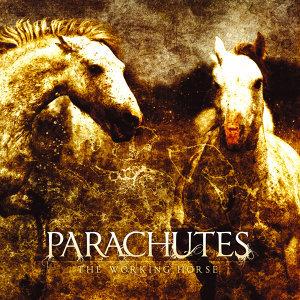 Parachutes 歌手頭像