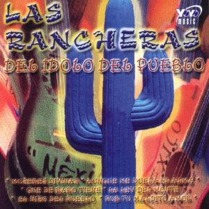 Harold Huertas Y El Mariachi Mixteca 歌手頭像