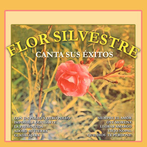 Flor Silvestre 歌手頭像