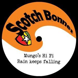 Mungo's Hi Fi 歌手頭像