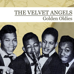 The Velvet Angels 歌手頭像