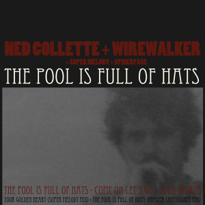 Ned Collette & Wirewalker 歌手頭像