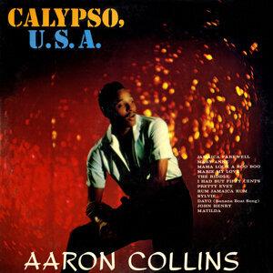 Aaron Collins 歌手頭像