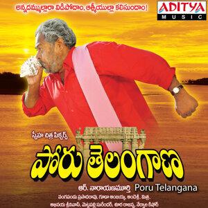 R.Narayana Murthy 歌手頭像