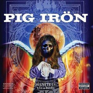 Pig Irön 歌手頭像