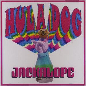 Jackalope 歌手頭像