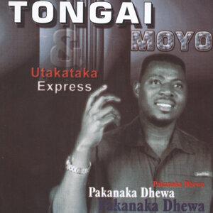 Tongai Moyo 歌手頭像