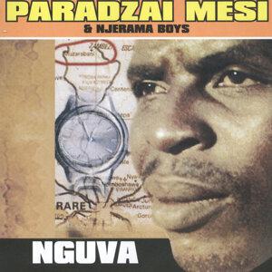 Paradzai Mesi & Njerama Boys 歌手頭像