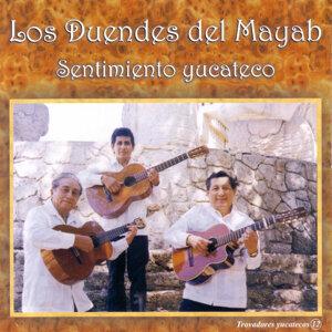 Los Duendes Del Mayab 歌手頭像