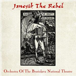 Orchestra Of The Bratislava National Theatre 歌手頭像