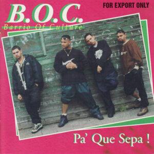 Barrio of Culture 歌手頭像