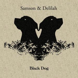 Samson & Delilah 歌手頭像