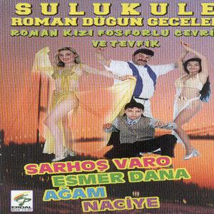 Erbil Kuşgöz 歌手頭像