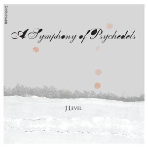 j-level