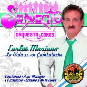 Carlos Mariano & Suavecito Orquesta y Coros 歌手頭像