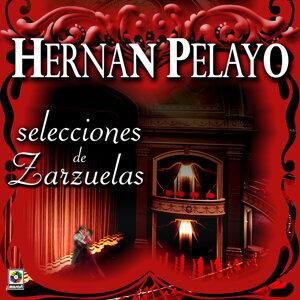 Hernan Pelayo