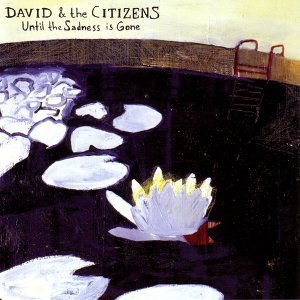 David & the Citizens 歌手頭像
