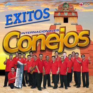 Marimba Orquesta Internacionales Conejos
