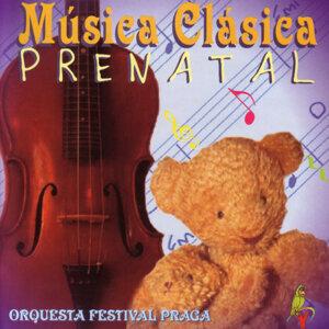 Orquesta Festival Praga 歌手頭像