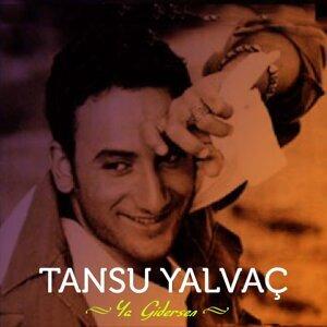 Tansu Yalvaç 歌手頭像