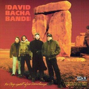 The David Bacha Band