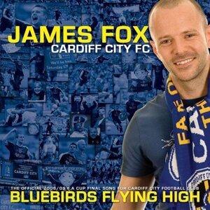 James Fox 歌手頭像