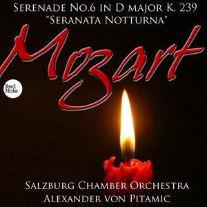 Salzburg Chamber Orchestra & Alexander von Pitamic 歌手頭像