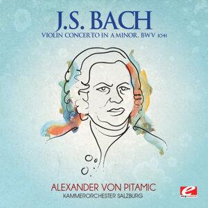 Kammerorchester Salzburg 歌手頭像
