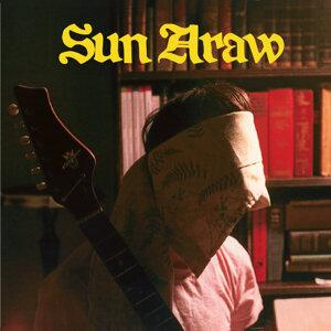 Sun Araw 歌手頭像