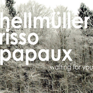 Hellmüller Risso Papaux 歌手頭像