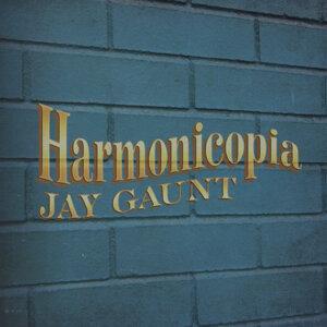 Jay Gaunt