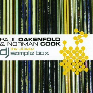 Paul Oakenfold, Norman Cook 歌手頭像