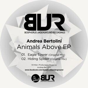 Andrea Bertolini 歌手頭像
